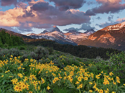 Spring Sunset In The Tetons Poster by Leland D Howard