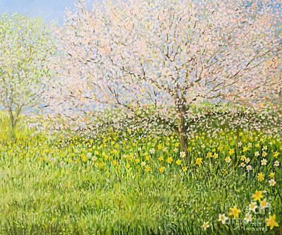 Springtime Impression Poster by Kiril Stanchev