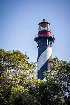 St. Augustine Lighthouse Poster by Carolyn Marshall