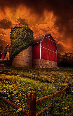 Standing Tall Poster by Phil Koch
