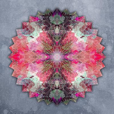 Star Mandala B Poster by Filippo B