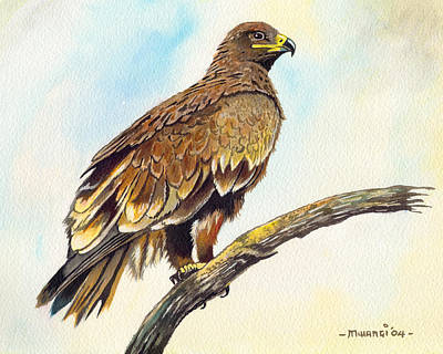 Steppe Eagle Poster by Anthony Mwangi