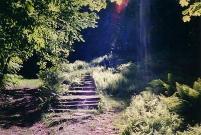 Steps To Madame Sherri Castle Poster by David Fiske