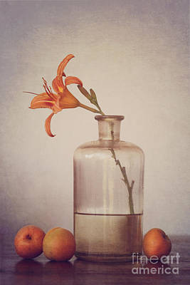 Still Life With Apricots Poster by Diana Kraleva