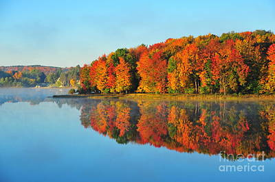 Stoneledge Lake Highway View Poster by Terri Gostola