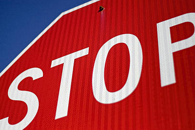 Stop Poster by Carol Leigh