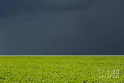 Storm Field Abstract Poster by Tim Gainey