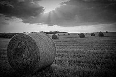 Straw Bales And Sunrays Bw Poster by David Dehner