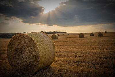 Straw Bales And Sunrays  Poster by David Dehner