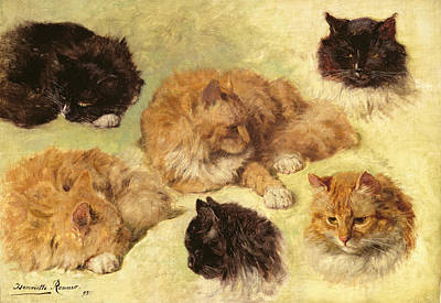 Studies Of Cats, 1895 Poster by Henriette Ronner-Knip
