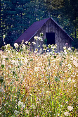 Sumer Barn 2 Poster by Rob Travis