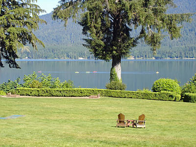Summer Day At Lake Quinault Poster by Mountain Dreams