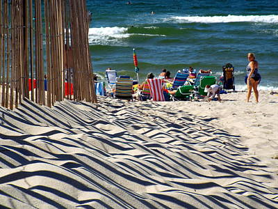 Summer On Cape Cod Poster by Dianne Cowen