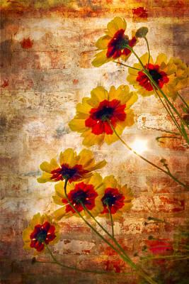 Sun Seekers Poster by Debra and Dave Vanderlaan
