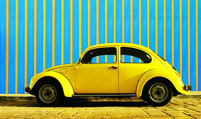 Sun Yellow Bug Poster by Laura Fasulo
