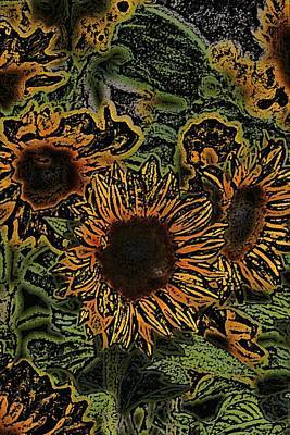 Sunflower 18 Poster by Pamela Cooper