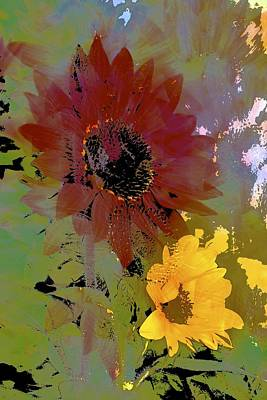 Sunflower 33 Poster by Pamela Cooper