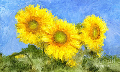 Sunflower Flowers Painting Poster by Giuseppe Persichino