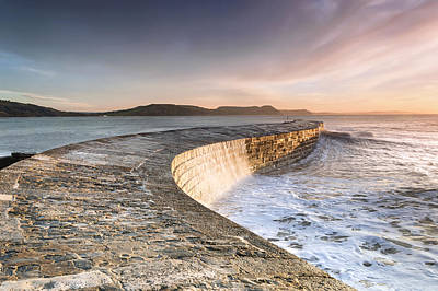 Sunkissed Cobb At Lyme Regis Poster by Chris Frost