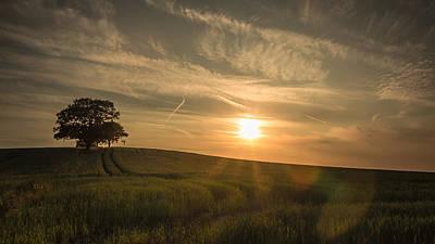 Sunlight Across The Crops Poster by Chris Fletcher