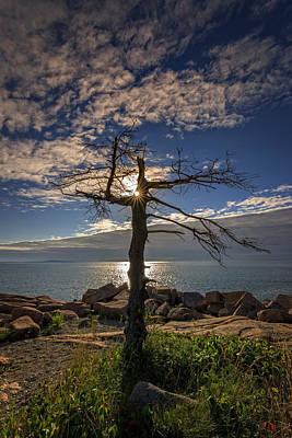 Sunrise Acadia Poster by Rick Berk
