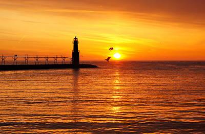 Sunrise Frolic Poster by Bill Pevlor