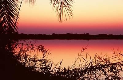 Sunrise On The Okavango Delta Poster by Stefan Carpenter