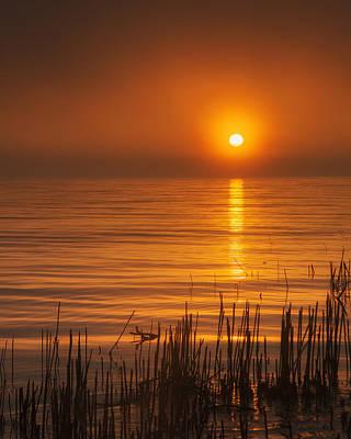 Sunrise Through The Fog Poster by Scott Norris