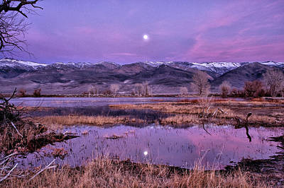 Sunset And Moonrise At Farmers Pond Poster by Cat Connor
