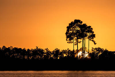 Sunset At Long Pine Key Pond Poster by Andres Leon