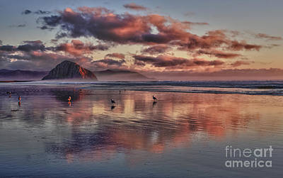 Sunset At Morro Strand Poster by Beth Sargent
