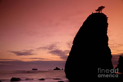 Sunset At Rialto Beach Poster by Keith Kapple