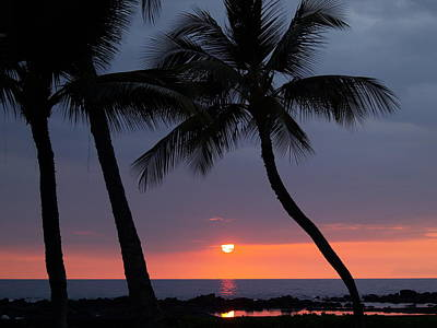 Sunset In Hawaii Poster by Athala Carole Bruckner