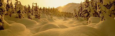 Sunset, Turnagain Pass, Alaska, Usa Poster by Panoramic Images