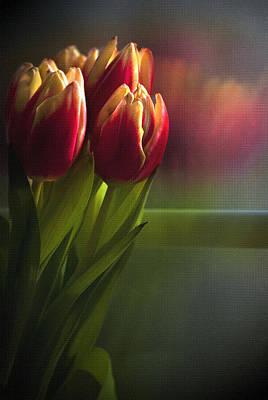 Sunshine On My Window Poster by Cindy Rubin