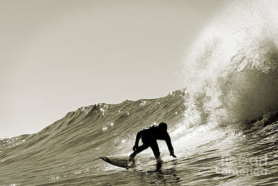 Surfer Sepia Silhouette Poster by Paul Topp