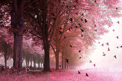 Surreal Fantasy Pink Nature Forest Woods With Birds Flying  Poster by Kathy Fornal