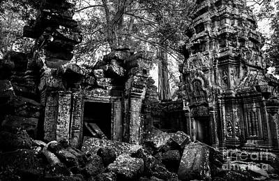 Ta Prohm Poster by Julian Cook