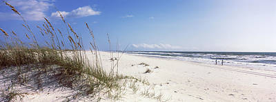 Tall Grass On The Beach, Perdido Key Poster by Panoramic Images