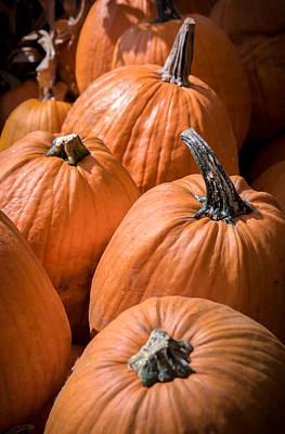Taste Of Autumn Poster by Karen Wiles