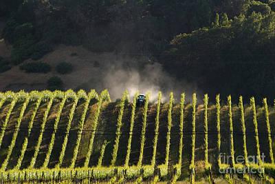 Tending A California Vineyard Poster by Ron Sanford