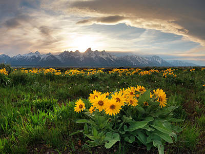Teton Spring 2 Poster by Leland D Howard