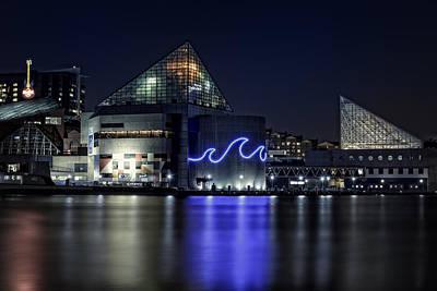 The Baltimore Aquarium Poster by Rick Berk