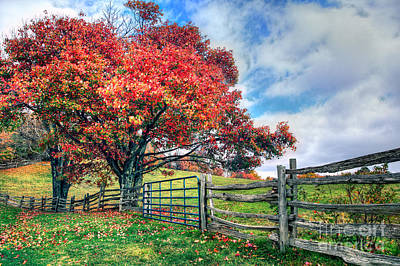 The Beauty Of Fall I - Blue Ridge Parkway Poster by Dan Carmichael