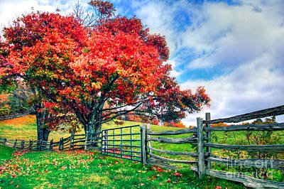 The Beauty Of Fall IIi - Blue Ridge Parkway Poster by Dan Carmichael