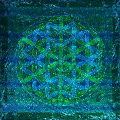 The Begining - Water Flower Of Life Mandala Poster by Iwona Sicinska