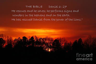The Bibles Says.... Daniel 6 Vs 27 Niv Poster by Reid Callaway