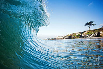 The Blue Curl Poster by Paul Topp