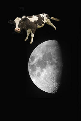 The Cow Jumped Over The Moon Poster by John Short