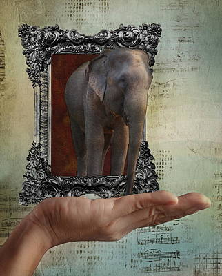 The Elephant In The Room Poster by Terry Fleckney
